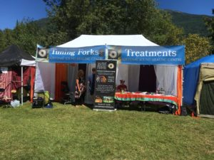 Acutonics 20 - Clinic Hours @ StarBelly Jam Music Festival | Riondel | British Columbia | Canada
