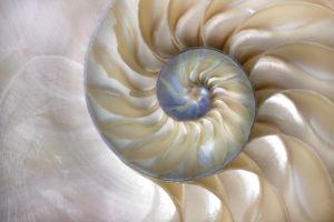 New Horizons:  Evolution of Consciousness @ Kootenay Sound Healing Centre